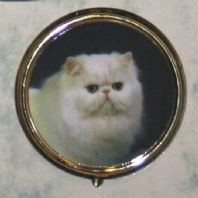 White Cat Pill Box